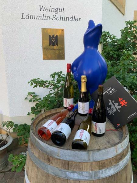Yoga-against-Corona-Weinpaket (5 x 0,75 L + 1 x 0,375 L Sekt gratis) - Lämmlin-Schindler