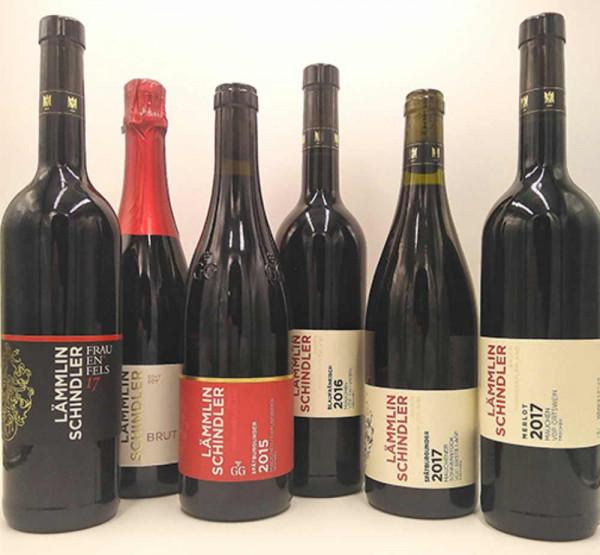 Rotwein Kennenlernpaket - Lämmlin-Schindler (versandkostenfrei!) - Biowein